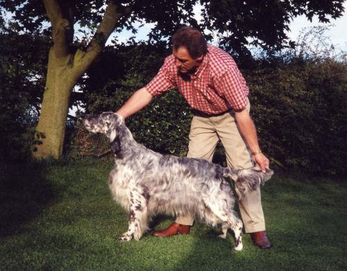 Richecca english setters for Rcc home show
